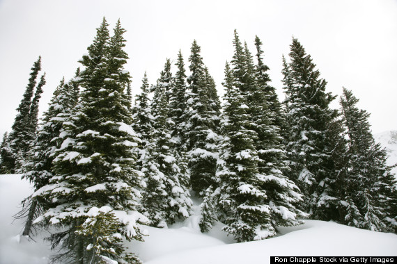 Images 8 Ways Snow Makes You A Happier Person | HuffPost 8 gps guide