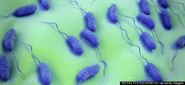 In Cholera Outbreaks, A Single Vaccine Dose Can Work As Well As The Standard Two