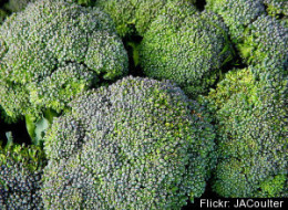 East Coast Broccoli Funding
