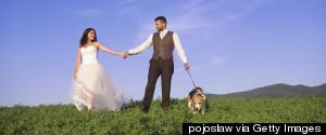 PETS WEDDING