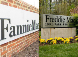 Fannie Freddie Losses