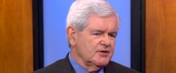 NEWT GINGRICH DOMA