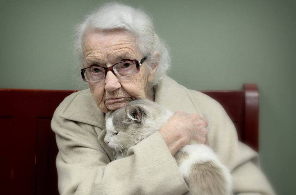 old lady with 100 cats arrest
