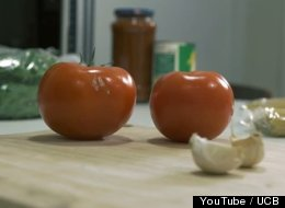 This Will Make You Rethink Every Vegetable You've Ever Cut Up And Cooked, You Monster