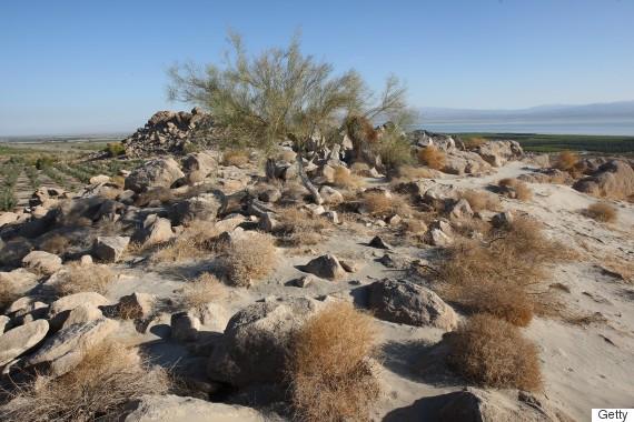 desert isladn