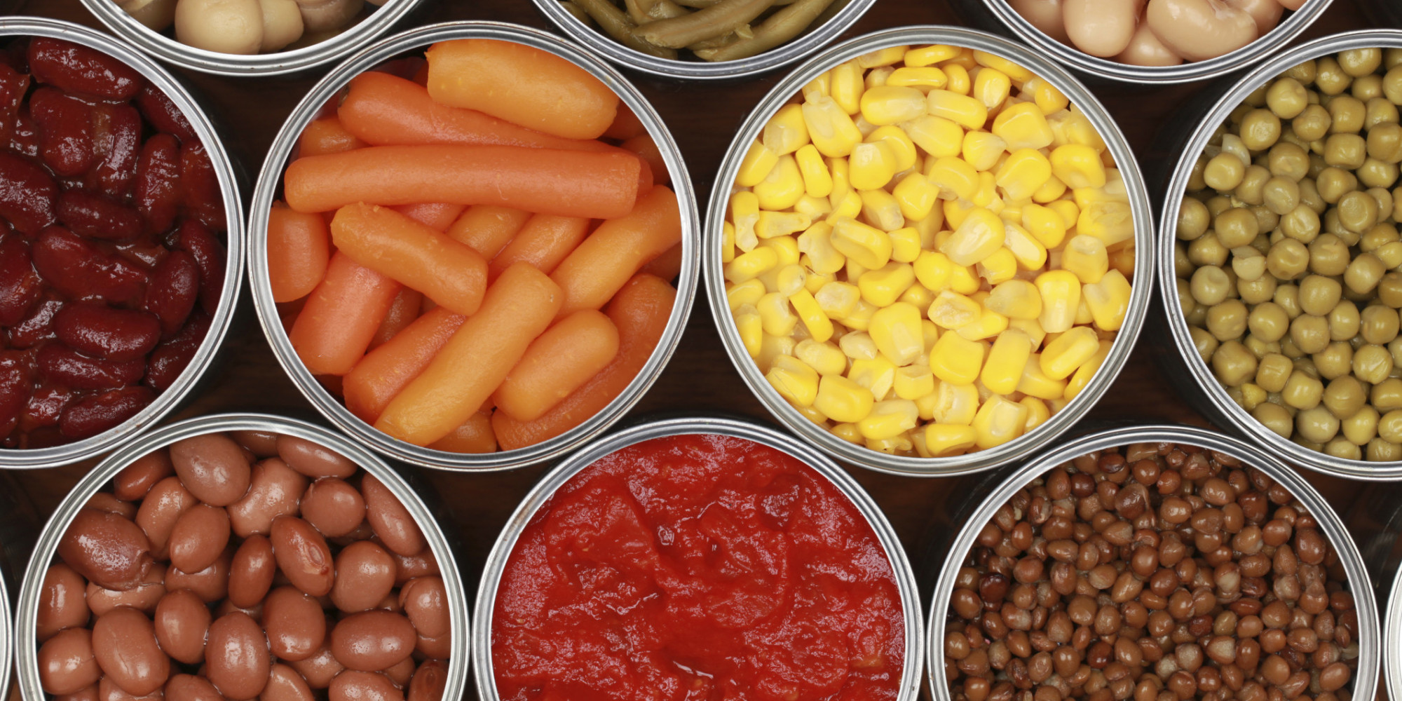 Fresh food and canned food essay
