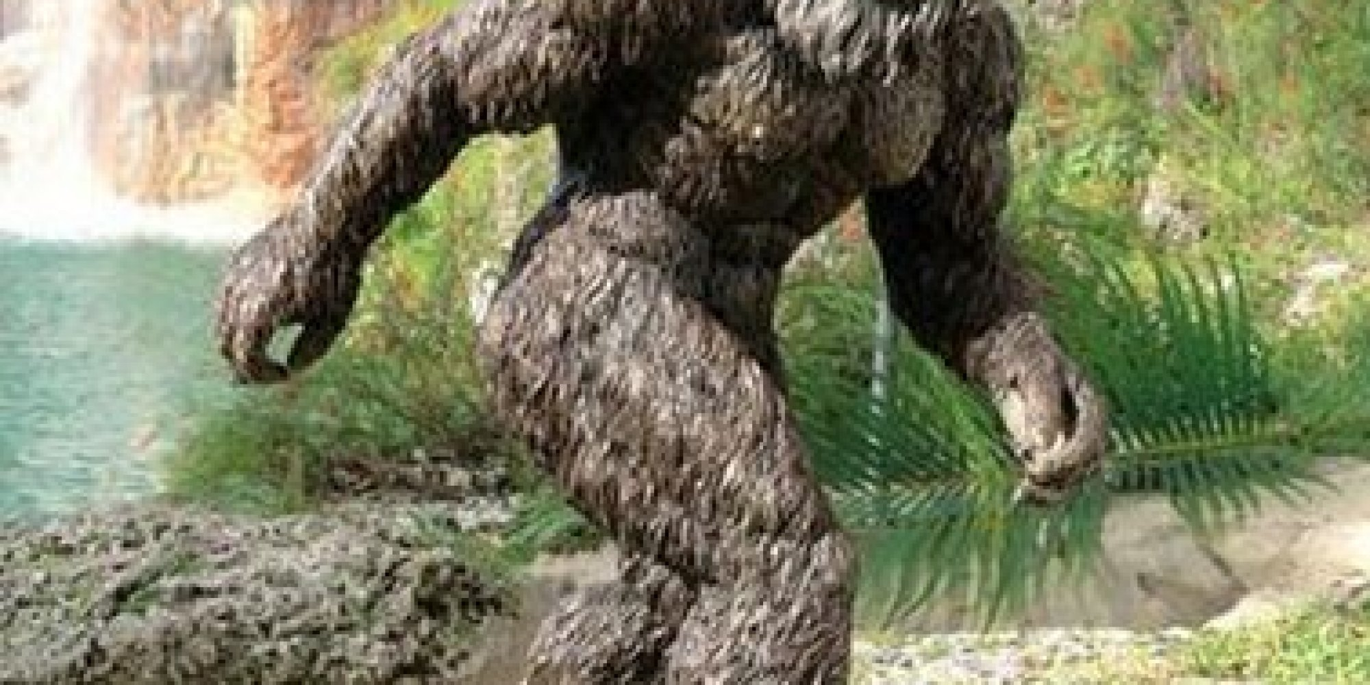 Skymall Is Dead Internet Lists Of Its Crazy Tchochtkes