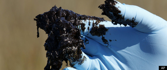 Oil Spill Health