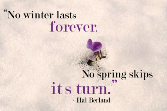 60 Inspirational Quotes To Help You Survive The Snowpocalypse HuffPost Awesome Survival Quotes