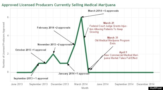 medical marijuana approvals