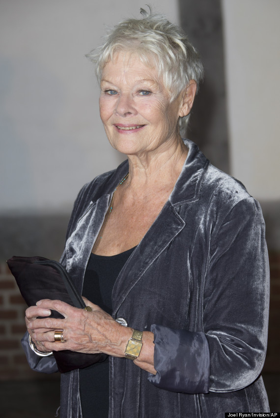 judi dench smiling 2014