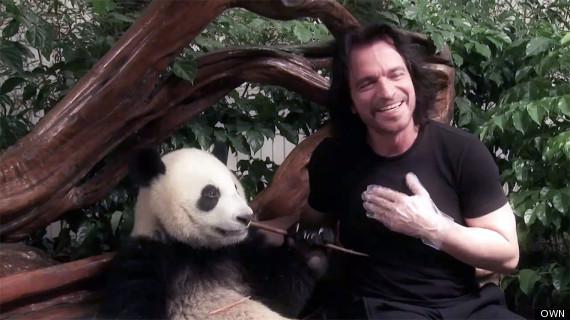 yanni and his panda santorini