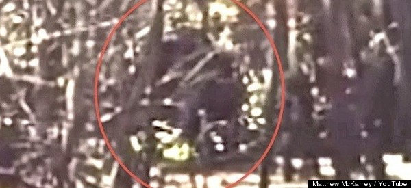 Another Skunk Ape (Or Bigfoot Hoaxer) Rears Its Ugly Head In Florida
