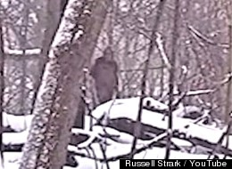 WATCH: What's That Strolling Through Brooklyn's Prospect Park?  Bigfoot Or A Big Faker?
