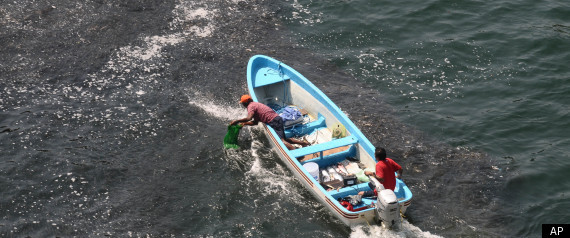 ACAPULCO MEXICO FISH MASS