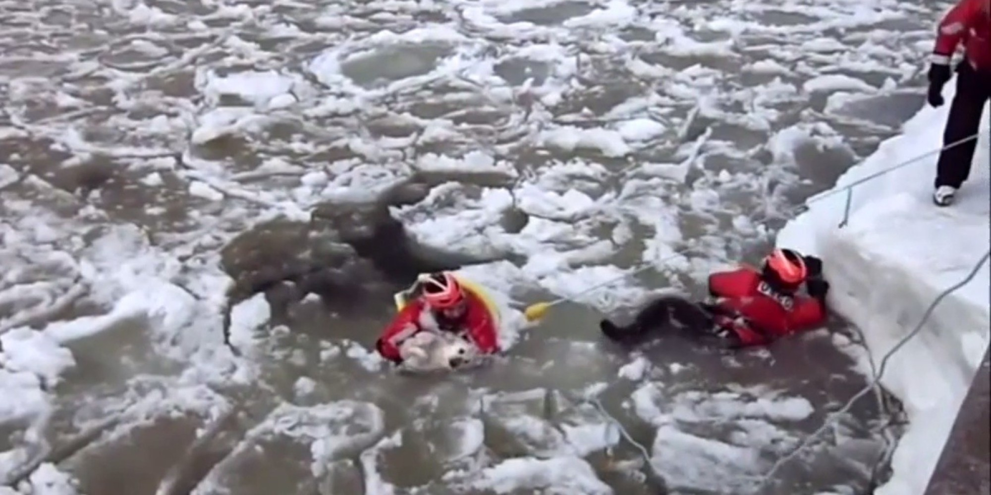 Coast Guard Rescues Dog From Icy Waters In Michigan Huffpost