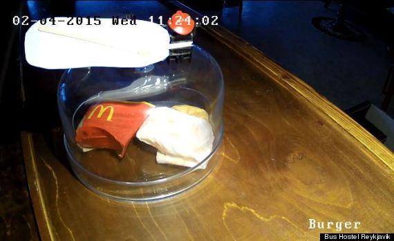 burger decay