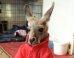 S mcdonalds kangaroo mini