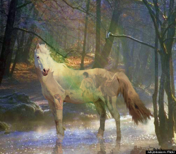spirit animal painting