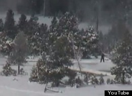 Bigfoot Visits Yellowstone, According To Latest Viral Video