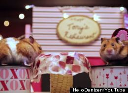 Tiny Hamsters Go On A Date And It's Bound To Make You Smile
