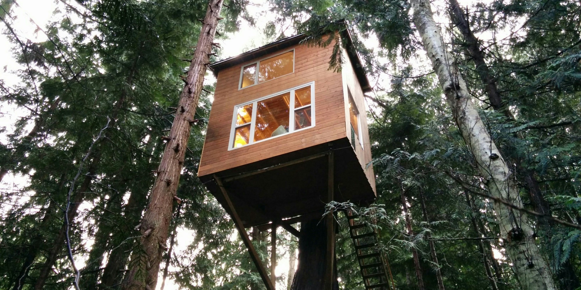 Tiny House Treehouse In Pender Island Is 39 Stability 39 For Owner