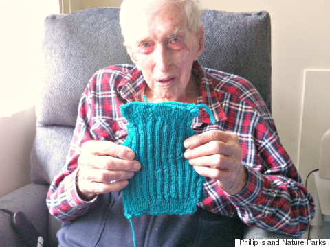 oldest man knits penguin sweater