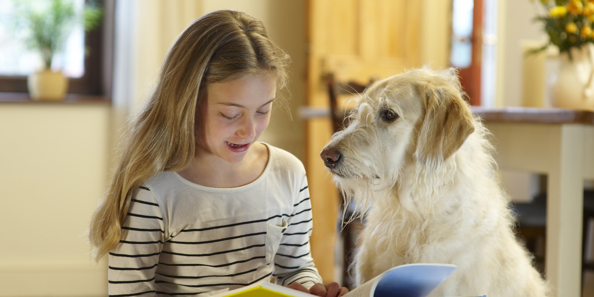 Struggling students read to therapy dogs find confidence in judgment