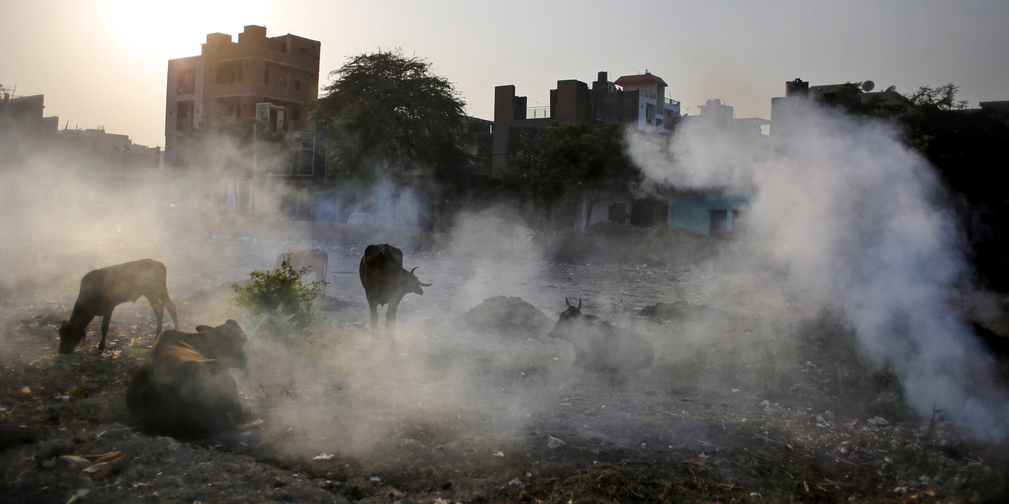 effects of air pollution in delhi Smog hanging over cities is the most familiar and obvious form of air pollution but there are different kinds of pollution—some visible, some invisible—that contribute to global warming generally any substance that people introduce into the atmosphere that has damaging effects on living things.