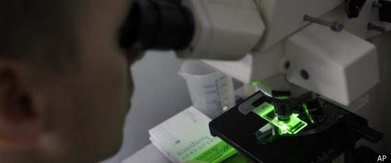 GENETICALLY MODIFIED FUNGUS MALARIA