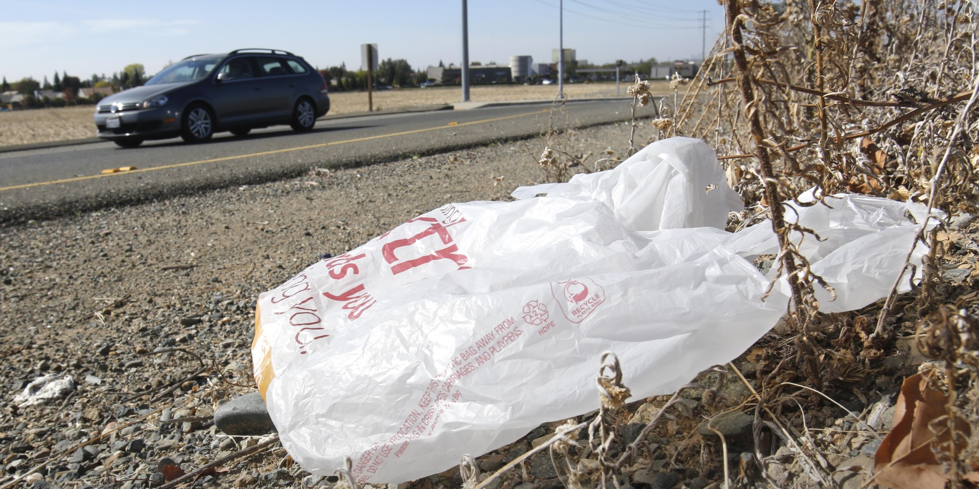 Landmark Plastic Bag Ban Officially On Hold Huffpost