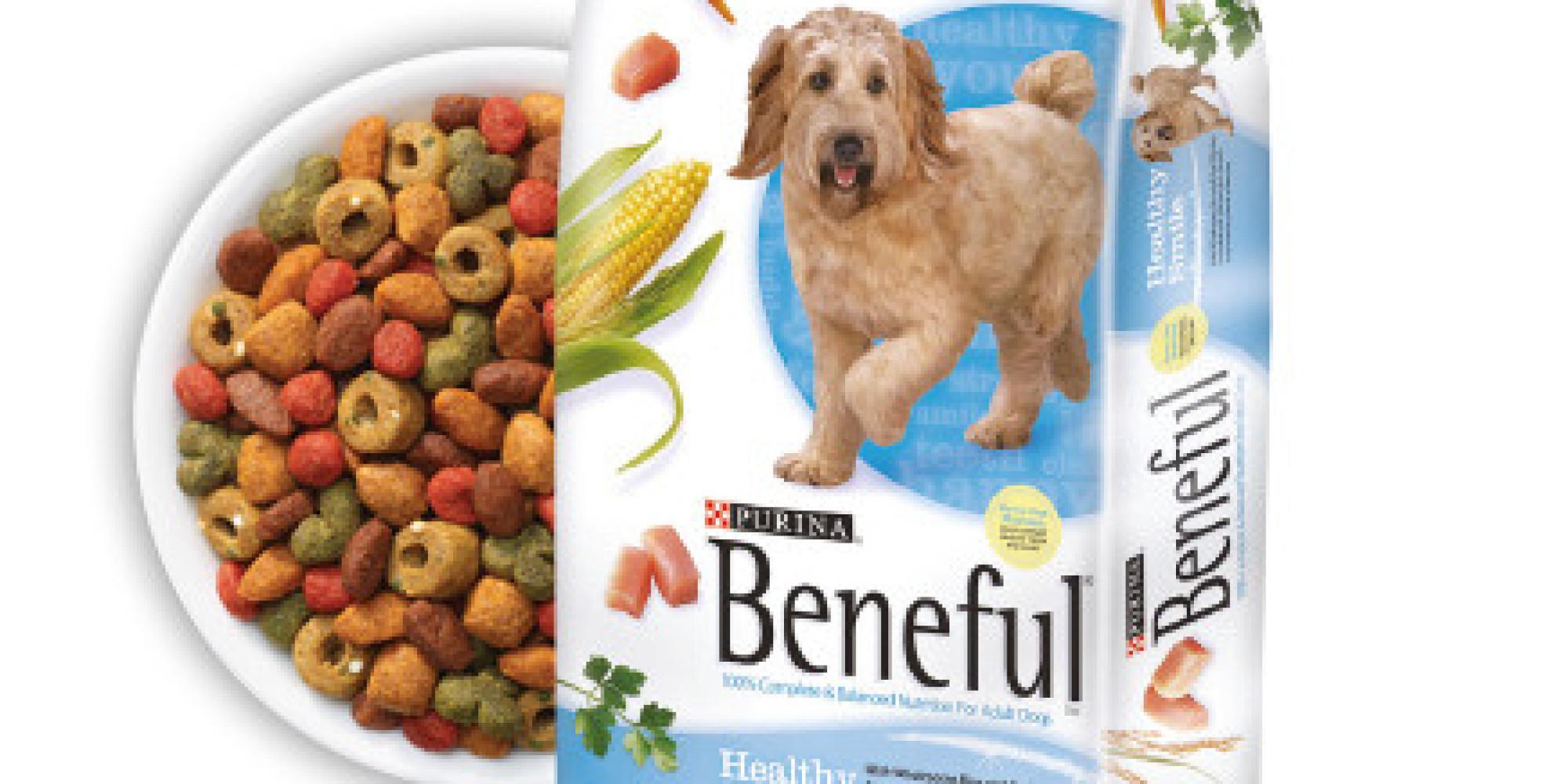 Purina Dog Food South Africa
