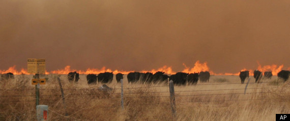 TEXAS WILDFIRES 2011