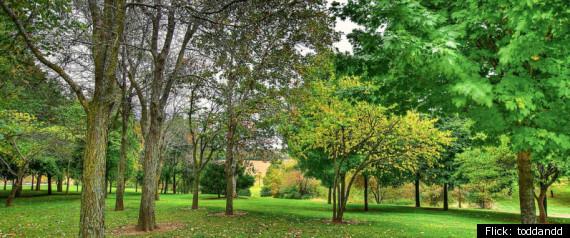 Mormon garden of eden fasci garden - Jackson county missouri garden of eden ...