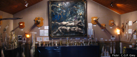 PENIS MUSEUM ICELAND