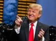 Trump's Polls: A Reality Check