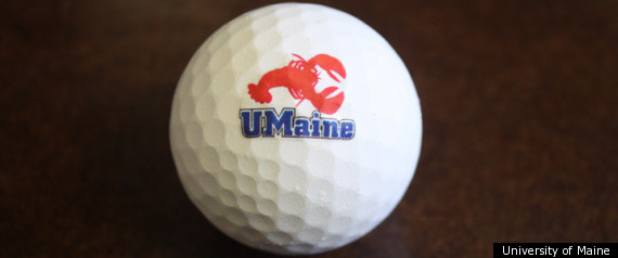 LOBSTER GOLF BALL