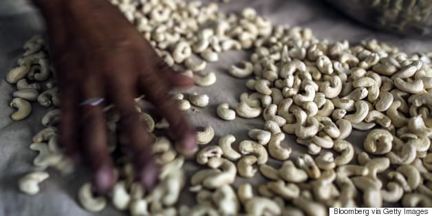 cashew india store