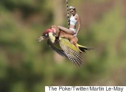 The 'Weasel Flying On A Woodpecker' Memes Are Here...