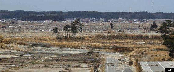 JAPAN NUCLEAR CRISIS ROADMAP