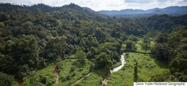Ancient Lost City Discovered In Honduras Rainforest