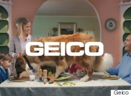 This Is How Advertising Should Be Done - With A Dog Causing Havoc