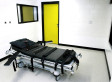 Georgia Halts Executions Over Problems With Lethal Injection Drug