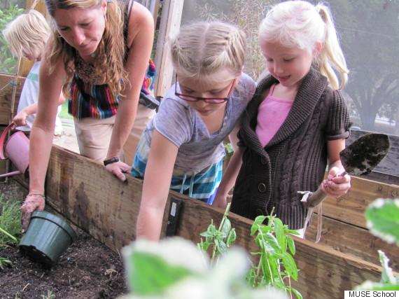 muse school garden