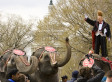 Ringling Bros. Circus To Phase Out Elephant Acts