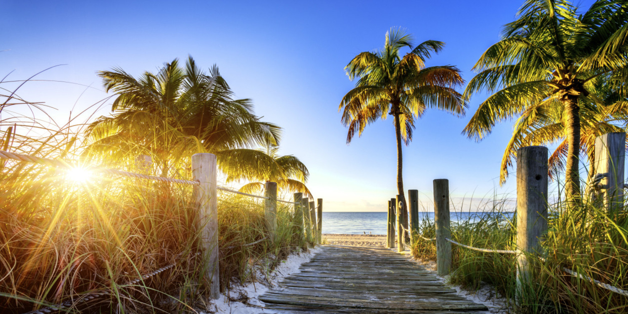 Vintage 'Visit Florida' Ad Is The Anti-Snow Propaganda You ...