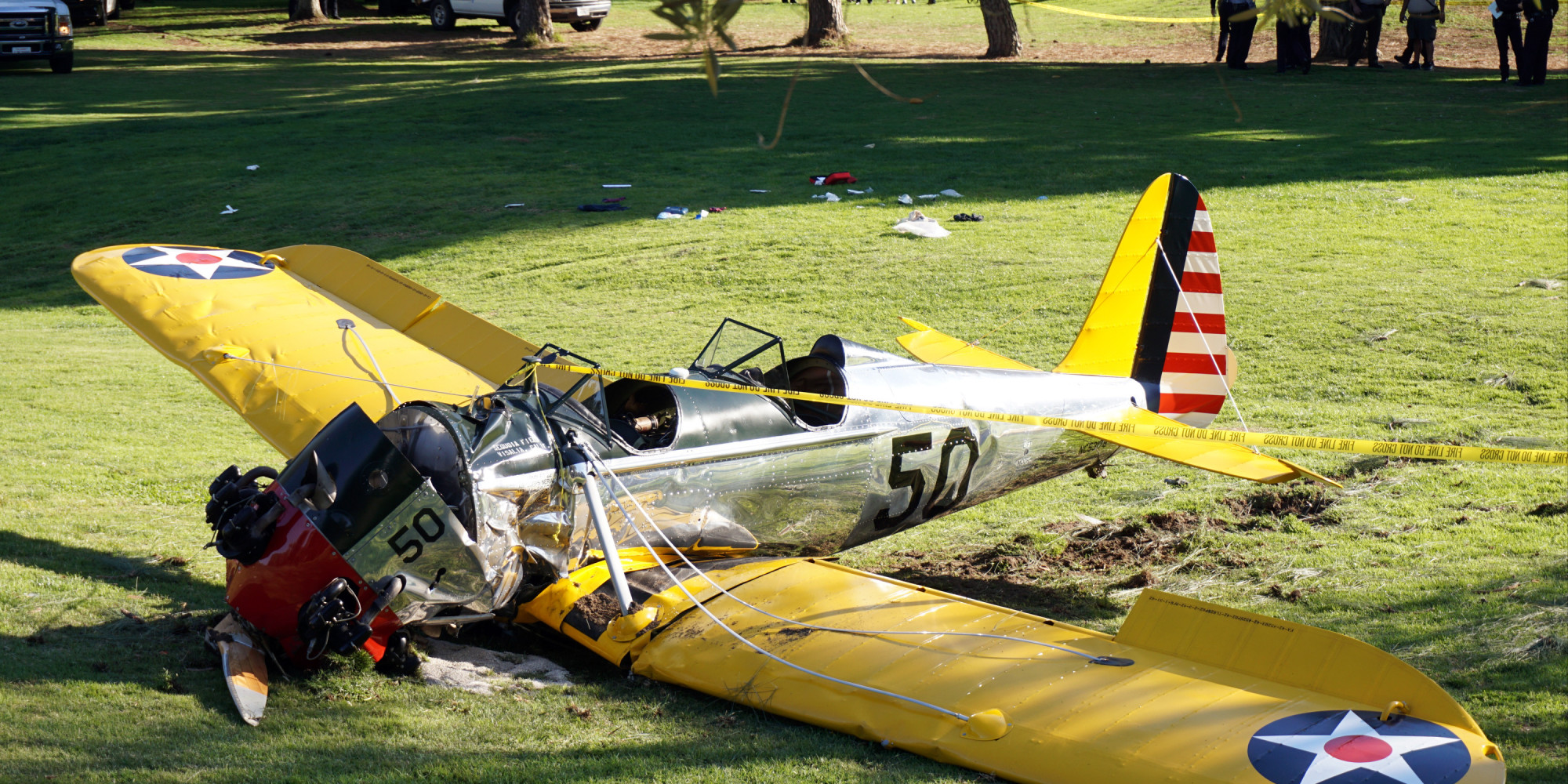Harrison Ford Wedding of Harrison Ford's Plane
