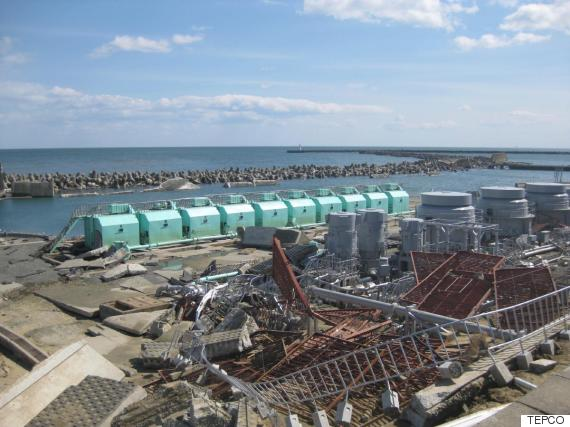 fukushima nuclear power