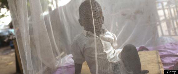 MOSQUITO NET MALARIA