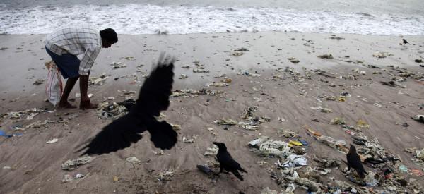 beach litter india